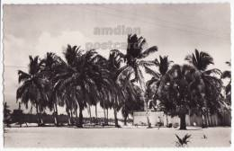 CAMEROUN~CAMEROON~DOUALA PARALLELE 4~1950s Photo Postcard RPPC ~PALM TREES~BEACH  [c4884] - Cameroon