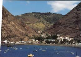 (111) Saint Helena Island With Tortoise - Sant'Elena