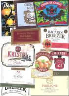 LOT De 18 étiquettes De Vin, Alcool,apéritif... - Collezioni & Lotti