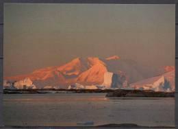 TAAF - Carte Postale - Ile Anvers - Le Mont Français - TAAF : Terres Australes Antarctiques Françaises