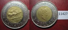 Canada  2  Dolares 2000 , Tipo Dificil Osa Con 2 Oseznos , Animales - Otros – América