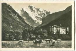 Switzerland, Interlaken, Hotel Jungfraublick Mit Jungfrau Mini Photo[12616] - Other
