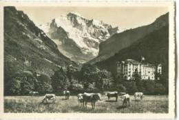 Switzerland, Interlaken, Hotel Jungfraublick Mit Jungfrau Mini Photo[12616] - Photography