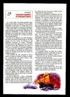 Format 27 X 19 Cm / La 1ère Expédition De Christophe COLOMB / La Poupée De Janine ( Jouet ) //  VP 1/52-B - Vieux Papiers