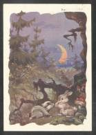 427 RUSSIA 1958 ENTIER POSTCARD A 11159 Used FAIRY TALE ANIMAL ANIMALS FOREST FAUNA MUSHROOM CHAMPIGNON PILZE Mailed - 1923-1991 USSR