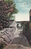 Bermuda Oleander Lane St Georges - Bermudes