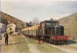 CF 26 Photo Train De Bois Au Rouve Jalcreste En 1965 - Autres Communes