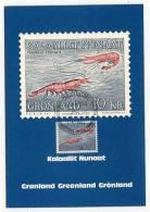 GREENLAND - AK138441 Shrimps - Groenland