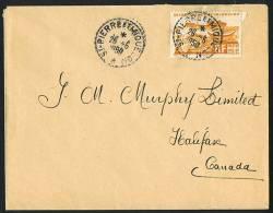 1950 Lettre  Pour Le Canada  Yv 338 Seul - St.Pierre & Miquelon
