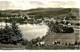 Titisee-Neustadt .le Village Et Le Lac. Cpa Photo Chrome Franz à Titisee. - Titisee-Neustadt