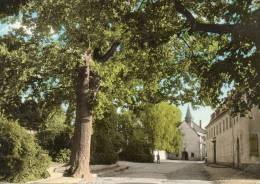 PERL  Dreilanderecke Quirinus Kapelle - Perl