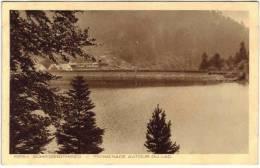 Schiessrothried - Promenade Autour Du Lac - France