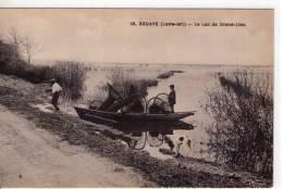 Bouaye..animée..le Lac De Grand-Lieu..pêcheurs..pêche Au Paniers..barque..chien - Bouaye