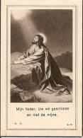 DP. PAULINA NAVELD - SCHRIEK 1910-1956 - Religione & Esoterismo