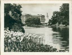 UK, London, Buckingham Palace From St. James's Park, 1920s Real Photo Snapshot [12670] - Other