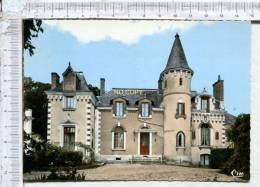 SOINGS EN SOLOGNE -  Château Du Carroir - France