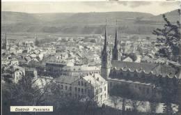 DIEKIRCH   PANORAMA 1913 - Diekirch