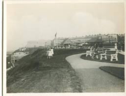 UK, West Cliff, Whitby, Photo Snap-Shot [12697] - Other
