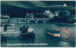 CPA Paris La Nuit, Pont Neuf Et Ile Du Vert Galant (pk6102) - Parijs Bij Nacht