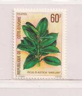 COTE D'IVOIRE  ( CDIV - 82 )  1980   N° YVERT ET TELLIER N° 528    N** - Côte D'Ivoire (1960-...)