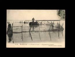 50 - BLAINVILLE - La Révolte Du Varech - Chargement De La Dramme - 63 Bis - Goëmon - Blainville Sur Mer