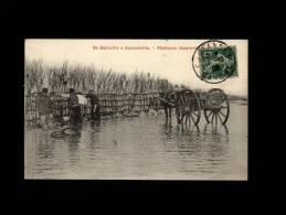 50 - BLAINVILLE - Pêcheurs Réparant Une.... - Blainville Sur Mer