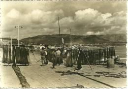AJACCIO (Corse): Dans Le Port - Ajaccio