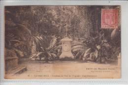 MAURITIUS, Tombeau De Paul & Virginie, Pampelmousses 1921 - Mauritius