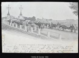 13940g FRONTIERE - Entrée Du Bétail Hollandais - Maeseyck - 1902 - Maaseik