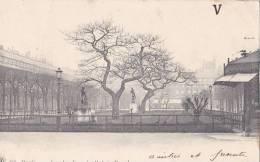 PARIS 1er - Les Jardins Du Palais Royal - Carte PRECURSEUR - - Distrito: 01