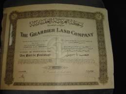 """Part Fondateur """" The Gharbieh Land Company """" Egypte Egypt Cairo La Caire 1935 Reste Des Coupons - Afrique"""
