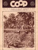 Revue Publicité COOP - Colonial - 1931 - HAUTE VOLTA - ANNAM - Huile - Chocolat - Werbung