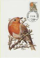 MC  BUZIN  Bird/ Oiseau  Rouge-Gorge / Roodborstje/ Erithacus Rubecula / Robin / Rotkehlchen  1986 - Sperlingsvögel & Singvögel