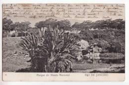 Brésil   RIO DE JANEIRO   Parque Do Museu Nacional - Rio De Janeiro