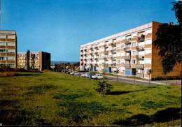 Aubergenville Cité H L M Allée Des Marronniers - Aubergenville