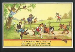 """Humour. Chats , Souris, Oiseau, Papillon... """" Cours D'histoire Naturelle"""" - Chats"""