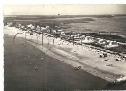 Saintes-Marie-de-La-Mer (13) : Vue Aérienne Sur Le Nouveau Lotissement Cabane De Gardian Env 1950(animé) - Saintes Maries De La Mer