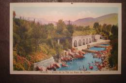 PRADES - Bords De La Têt Au Pont De Catllar - Prades