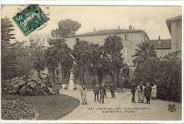 Carte Postale Ancienne Montpellier - Ecole D'Agriculture. Bâtiment De La Direction - Montpellier
