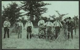 """""""Harvesters"""".  Unused,  C1920. - Farmers"""