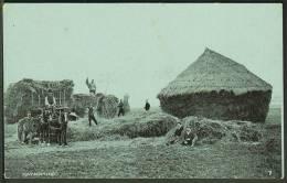 """Haymaking"".  Unused,  C1920. - Farmers"