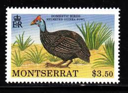 Montserrat MNH Scott #766 $3.50 Helmeted Guinea Fowl - Domestic Birds - Montserrat