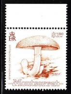 Montserrat MNH Scott #773 $1.50 Gymnopilus Chrysopellus - Mushrooms - Montserrat