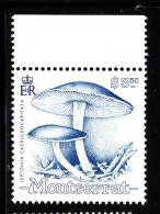 Montserrat MNH Scott #775 $3.50 Leptonia Caeruleocapitata - Mushrooms - Montserrat
