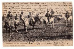 AMERICA CHILE HACENDADO WITH HIS JEANS ON HORSES  Nr. 24 OLD POSTCARD 1909. - Chile