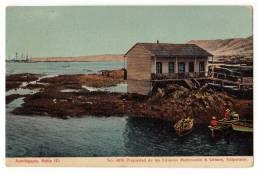 AMERICA CHILE ANTOFAGASTA BAHIA III Nr. 4076 MATTENSOHN & GRIMM OLD POSTCARD - Chile