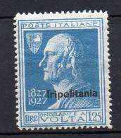 Tripolitanea 1927 Volta N. 45 Nuovo MLH* - Tripolitania