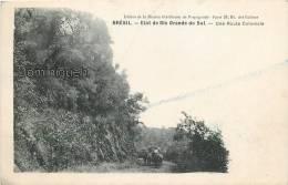 Etat De Rio Grande Do Sul Une Route Coloniale - Sin Clasificación