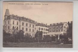 L 9200 DIEKIRCH, Hotel Des Ardennes, Le Jardin, Kl.Klebereste Auf Der Rückseite - Diekirch