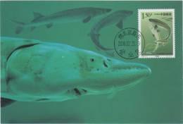 CM CHINE 2000 - Fische